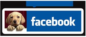 Pagina Facebook di Zampa di Cane
